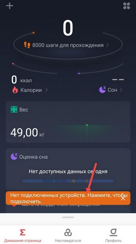 Кнопка подключения в программе Zepp